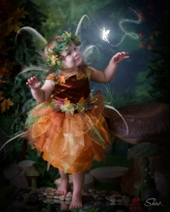 Shine Photo Fairy Session