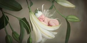 Shine Photo - Newborn Photography