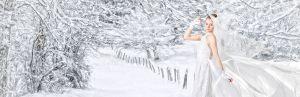 Fine Art Bridal Formal at Shine Photo in Thunder Bay
