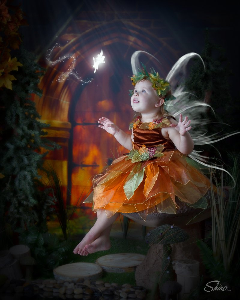 fairy portrait days