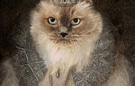 Imperial Pet Portrait Shine Photo Studio