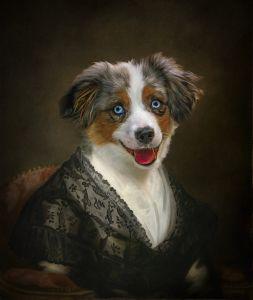 Imperial Pet Portrait Dog Shine Photo Studio