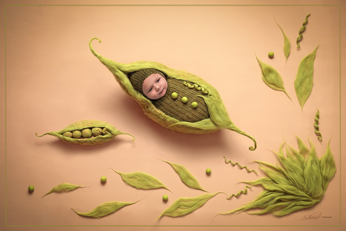 Shine Photo Studio Newborn Art